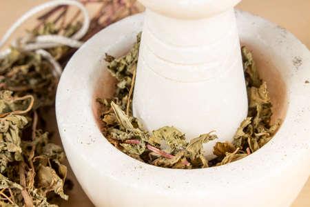 hojas secas: Moler las hojas secas de menta poleo con un mortero y una maja de mármol