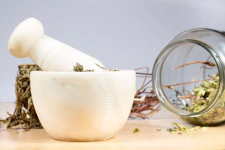 origanum: Mortar and pestle made of marble, beside dry herbs (pennyroyal and oregano) Stock Photo