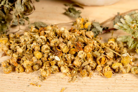 squaw: Dry chamomile on a wooden table, beside pennyroyal and oregano