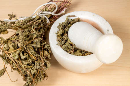 squaw: Bunch of dried pennyroyal beside a marble mortar and pestle Stock Photo