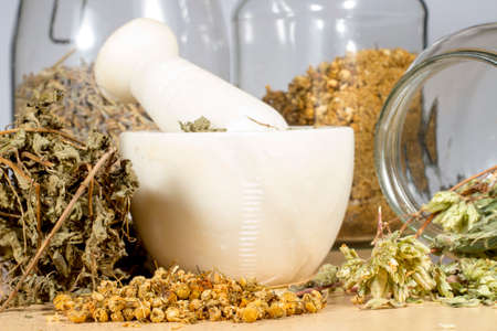 squaw: Several dry herbs used for tisanes, folk medicine and cooking: Pennyroyal,chamomile and oregano Stock Photo