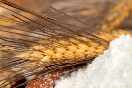 staple: Wheat spike beside a heap of pastry flour made with this kind of cereal. Staple foods.