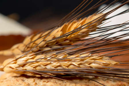 derived: Wheat spikes above biscuits. Derived ingredients at background, such as pastry flour and breadcrumbs. Stock Photo
