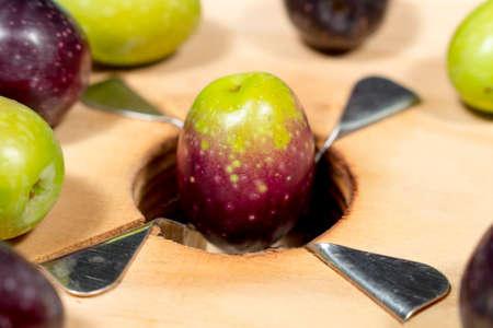 slit: Naturally ripe olive over blades of a traditional wooden slitter for preparing seasoned slit olives