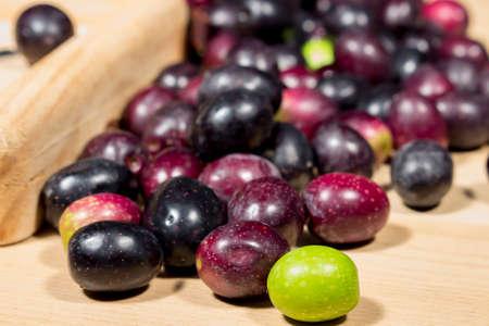 seasoned: Green olive in front of naturally ripe olives. Preparing seasoned slit olives