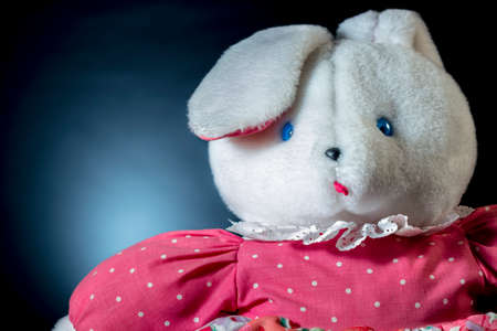 playthings: Teddy bear with big ears and pink dress