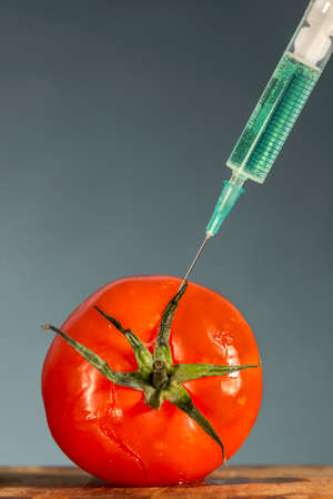 biotech: Hypodermic needle injecting a bright green substance into a red tomato. Biotech.