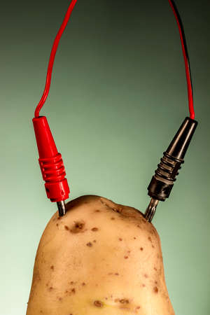 Potato connected to electrodes, on green background Stock Photo