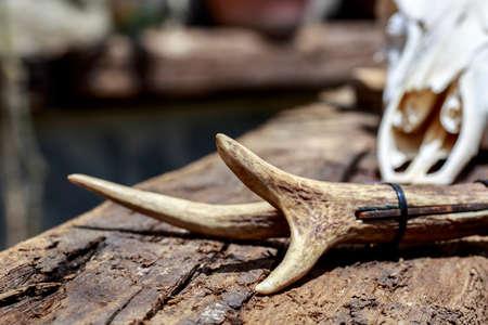 sylvan: Detail of knifes handle made with deer antler