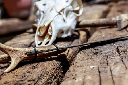 hick: Rustic knife with handle made of deer antler, in front of cervid skull