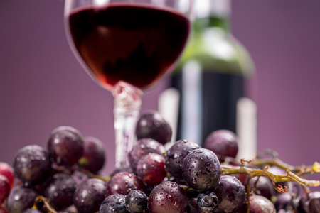 Red wine grapes in front of glass and bottle, on purple background