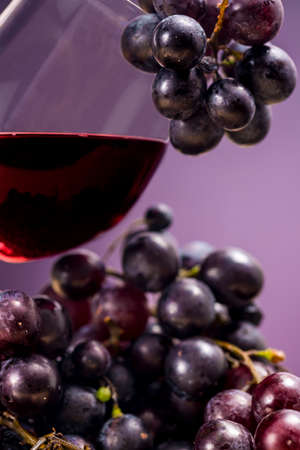 oenology: Red wine and grapes. Oenology Stock Photo