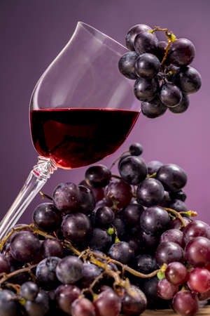 oenology: Glass of Rioja wine and red grapes, on purple background. Oenology
