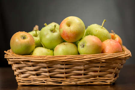 Green and red little apples into a wicker basket. Traditional variety of apples originating from Andalusia