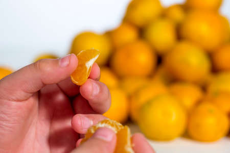 Child has an orange tangerine segment between his fingers. Detail view. Heap of citrus fruits at white background
