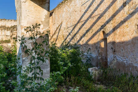 lintel: Old farmyard covered by weeds