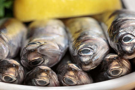 Fresh Mediterranean anchovies, typical boquerón of Andalusian gastronomy