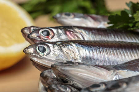 Fresh Mediterranean anchovies, typical boquerón of Andalusian gastronomy, in front of parsley and lemon slice