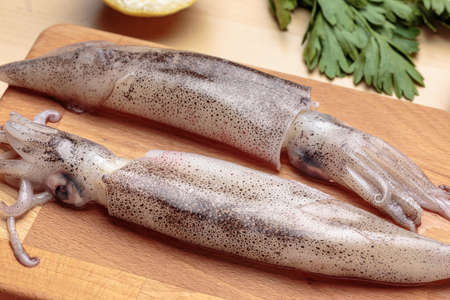Two fresh cuttlefishes over a cutting board at kitchen. Raw squids.