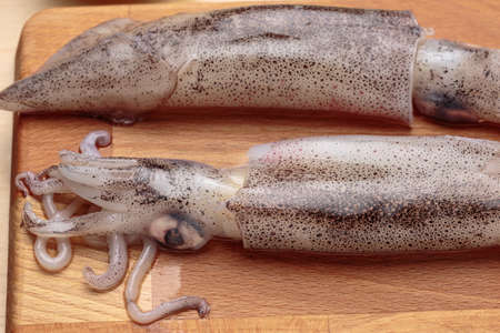 Detail of squids over a wooden cutting board Stock Photo