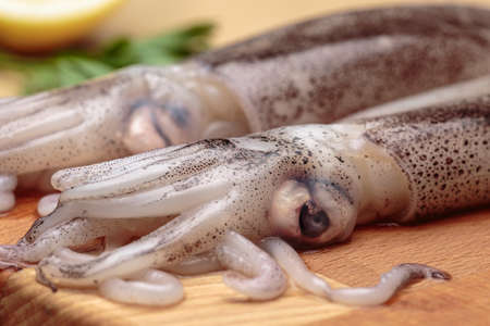 Fresh squids. Detail of eyes and tentacles of raw cuttlefishes over a wooden table Stock Photo