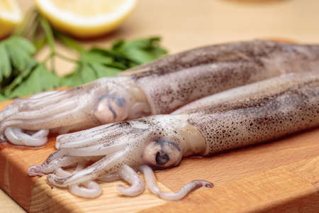Cooking fresh squids. Raw cuttlefishes over a wooden cutting board, in front of lemon and parsley