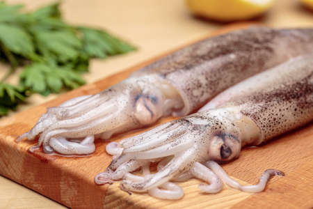 Close-up of squids at kitchen. Raw cuttlefishes over a wooden cutting board, in front of lemon and parsley Stock Photo