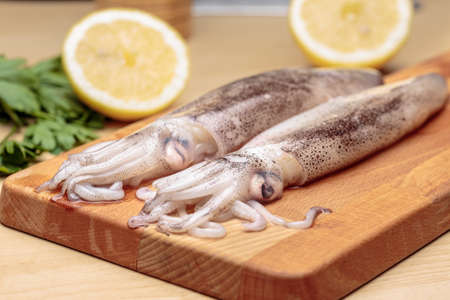 Cuttlefishes at kitchen. Raw squids over a wooden cutting board, in front of lemon parsley and a knife