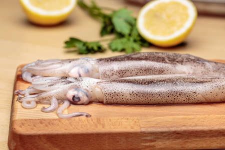 Squids over a wooden cutting board, in front of a sliced lemon and parsley, at kitchen. Raw cuttlefish