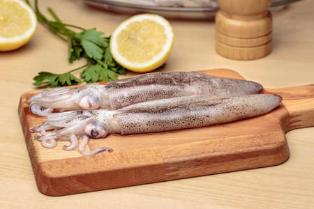 Cooking squids. Raw cuttlefishes over a wooden cutting board in front of parsley and sliced lemon, at kitchen