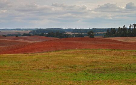 Red soil fields plowed for sowing of winter crops Stock Photo - 15676032
