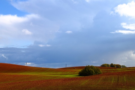 Plowed field under a high blue sky Stock Photo - 15731282