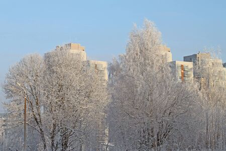 Winter cityline  View on buildings through trees in snow Stock Photo - 17218328