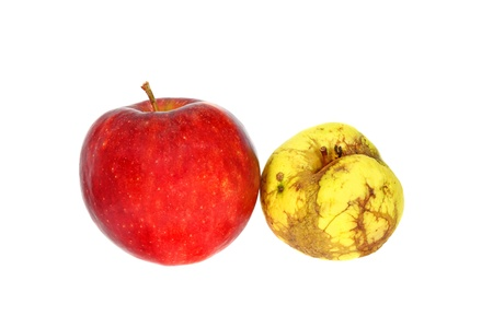 Ugly yellow apple near the good red apple isolated on white background