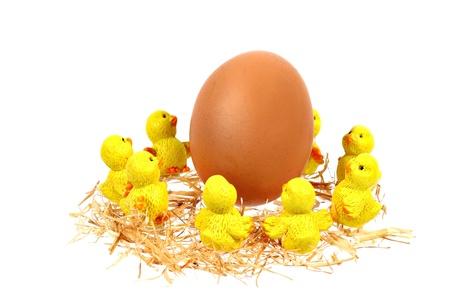 Yellow chickens dance around big egg on white background Stock Photo