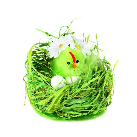 Easter eggs and bird in green grass nest with daisies isolated on white background