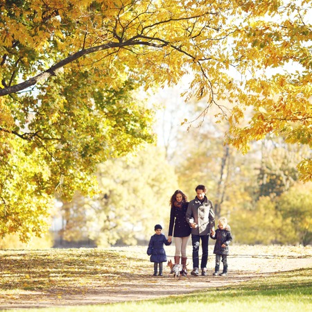 autumn in the park: Portrait of family with children and dog walking in autumn park Stock Photo