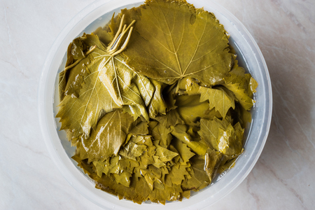 Grape or Vine Leaves in bottle of water for Turkish Dolma. Organic Food. Stock Photo