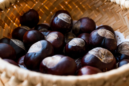 Horse Chestnuts in wooden basket. Organic Food. Stock Photo
