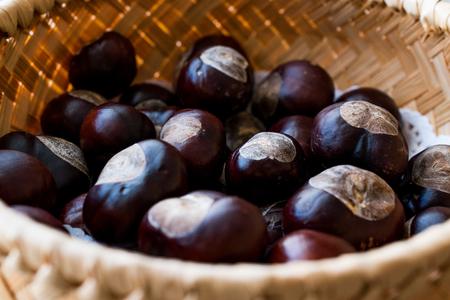 Horse Chestnuts in wooden basket. Organic Food. Archivio Fotografico