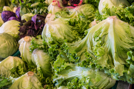 Fresh Lettuce and greens for salad at greengrocer
