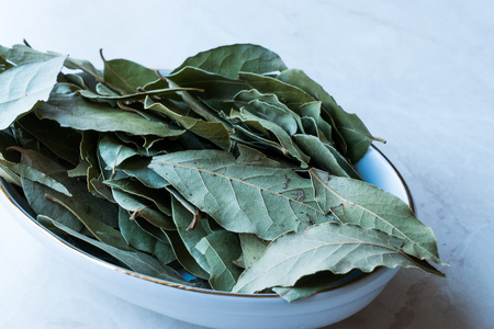 Daphne Leaves from Laurel Tree. Organic Product.