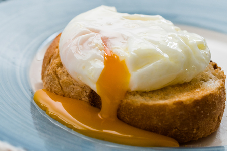 Poached Egg on Toast Bread for Breakfast. Organic Food.