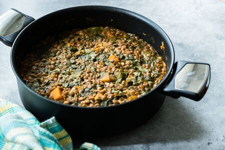 Homemade Lentil Stew / Soup with Chard and Sweet Potatoes in Pot Pan. Organic Food. Reklamní fotografie - 124568560
