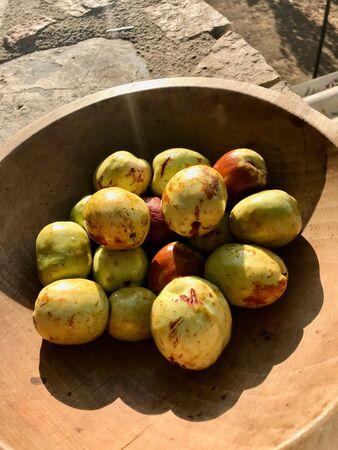 Fresh Jujubes in Wooden Bowl at Garden Sunlight. Organic Food.