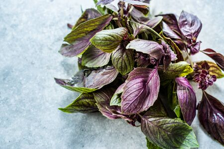 Bunch of Purple Basil Leaves  Violet Ready to Use. Organic Product.