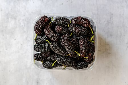 Organic Dark Black Ripe Mulberries in Plastic Box Package for Sale / Morus Fruit. Redy to Eat. Foto de archivo