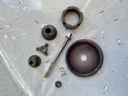 Coffee Grinder Parts Washed on Kitchen Surface. Ready to Mount. Stockfoto