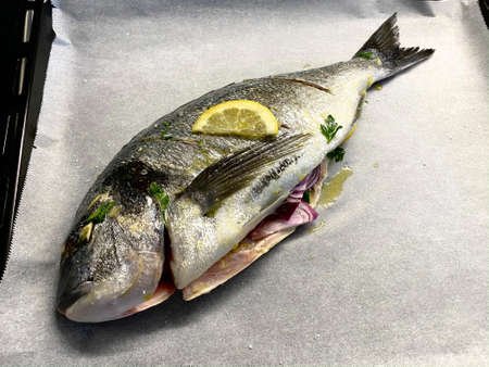 Raw Salted and Marinated Sea Bream Fish on Baking Paper. Ready to be Cooked in Oven.