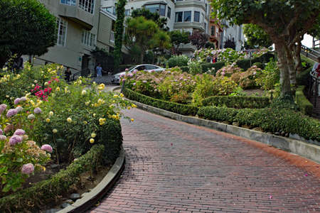 Lombard Street - 샌프란시스코 에디토리얼